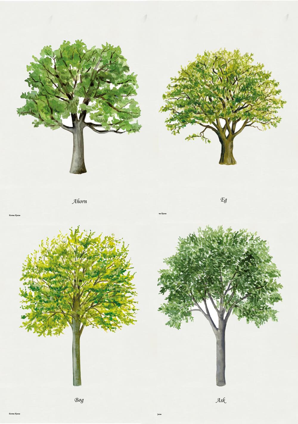 Tree Lithographs
